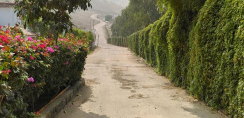 Terrazas del valle 2